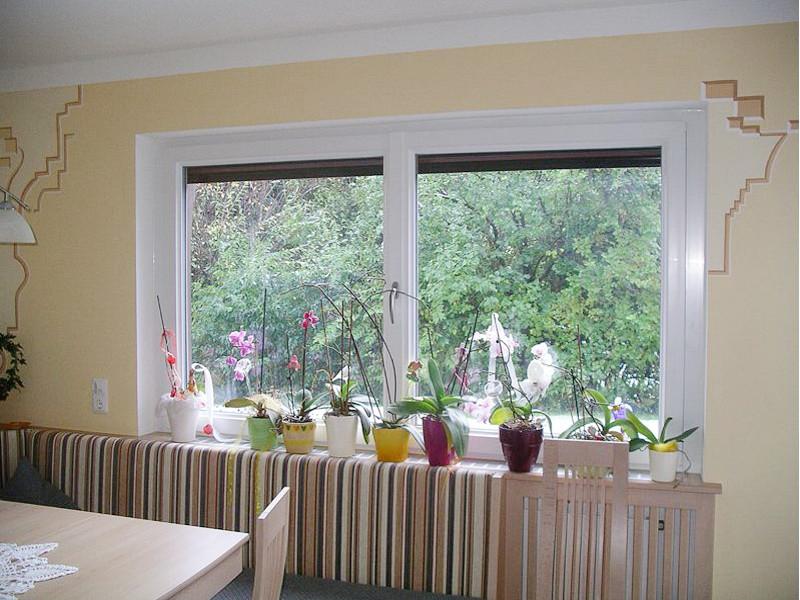 perfecta Fenster und Orchideen