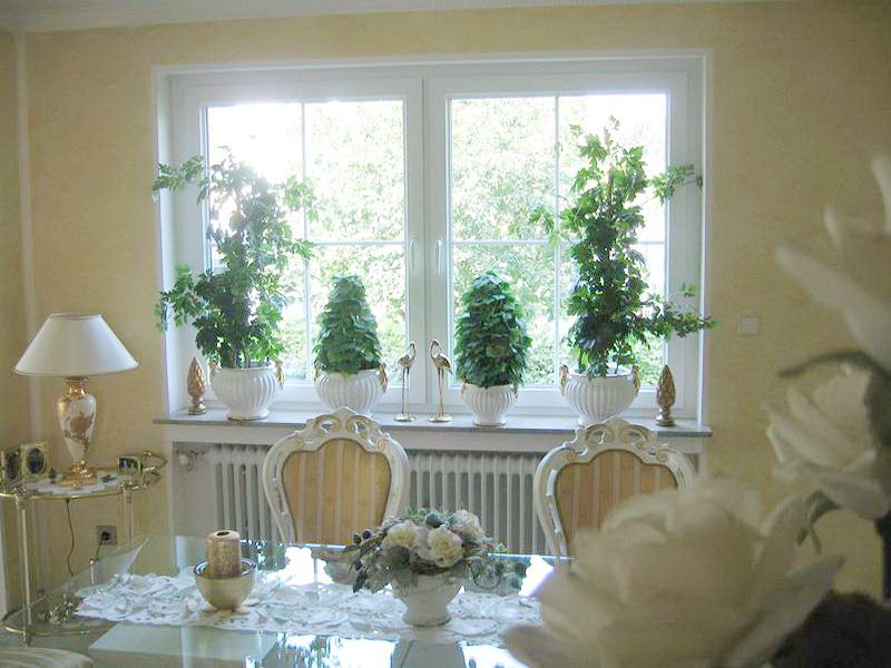 grün dekorierte perfecta Fenster
