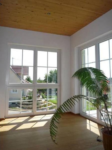 perfecta Fensterecke mit Palmen